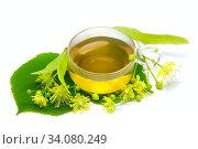 Купить «Липовый чай», фото № 34080249, снято 22 июня 2020 г. (c) Татьяна Белова / Фотобанк Лори