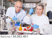 Купить «Scientists taking notes while checking agricultural products», фото № 34083461, снято 24 января 2019 г. (c) Яков Филимонов / Фотобанк Лори