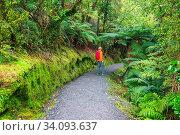 Купить «Hiking and tramping in New Zealand. Travel and adventure concept», фото № 34093637, снято 10 июля 2020 г. (c) easy Fotostock / Фотобанк Лори