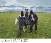 Купить «Young shepherds on their summer pasture. the face mask is protecting the faces from cold, sun and dust. Alaj Valley in front of the Trans-Alay mountain...», фото № 34119221, снято 6 июля 2019 г. (c) age Fotostock / Фотобанк Лори