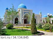 Большая красивая мечеть,с голубыми куполами. Узбекистан.Ташкент. (2017 год). Стоковое фото, фотограф Рамиль Усманов / Фотобанк Лори