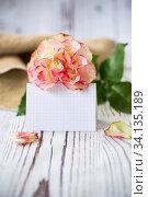 Купить «light pink rose with a blank card for text on a wooden», фото № 34135189, снято 1 июля 2020 г. (c) Peredniankina / Фотобанк Лори