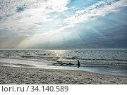 Купить «Der Weststrand auf der Halbinsel Fischland-Darss-Zingst an der Ostseekueste in Mecklenburg-Vorpommern», фото № 34140589, снято 2 июля 2020 г. (c) easy Fotostock / Фотобанк Лори