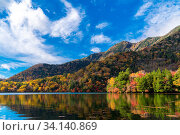 Купить «Autumn Fall Lake Forest Woodlands and Mountain at Yunoko lake at Nikko Tochigi Japan», фото № 34140869, снято 7 августа 2020 г. (c) easy Fotostock / Фотобанк Лори