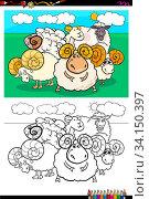 Cartoon Illustration of Funny Sheep Farm Animal Characters Coloring Book Activity. Стоковое фото, фотограф Zoonar.com/Igor Zakowski / easy Fotostock / Фотобанк Лори