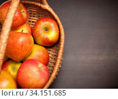 Купить «Fresh organic apples in a basket on an anthracite background with space for text», фото № 34151685, снято 6 июля 2020 г. (c) easy Fotostock / Фотобанк Лори