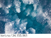 Купить «Huge beautiful snowflakes on the ice of Lake Baikal», фото № 34155961, снято 26 января 2020 г. (c) Владимир Мельников / Фотобанк Лори