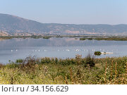 Купить «View of the lake Hemaditida (northwest Greece, Macedonia)», фото № 34156629, снято 27 августа 2017 г. (c) Татьяна Ляпи / Фотобанк Лори