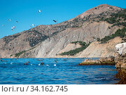Rock outlier on background of mountains without forests, which are greatly altered by erosion, water erosion of soil. On rocks sit the cormorants. View from water to shore. South Coast of Crimea. Стоковое фото, фотограф Zoonar.com/Maximilian Buzun / easy Fotostock / Фотобанк Лори
