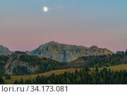 Moonrise seen from Passo delle Erbe, Dolomites, Italy, October 2019. Стоковое фото, фотограф John Shaw / Nature Picture Library / Фотобанк Лори