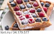 Купить «Belgian waffles on plate with berries», видеоролик № 34179577, снято 8 июля 2020 г. (c) Сергей Петерман / Фотобанк Лори