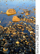 Geroell und Kieselsteine im Flussbett. Hochformat. Rubble and pebbles in the riverbed. Vertical format. Стоковое фото, фотограф Zoonar.com/Bernhard Kuh / easy Fotostock / Фотобанк Лори