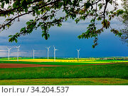 Alles grün. Стоковое фото, фотограф Zoonar.com/SEIFERT BIRGIT / easy Fotostock / Фотобанк Лори