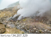 Купить «Picturesque view of volcanic landscape, aggressive hot spring, erupting fumarole, gas-steam activity in crater active volcano», фото № 34207329, снято 7 сентября 2014 г. (c) А. А. Пирагис / Фотобанк Лори