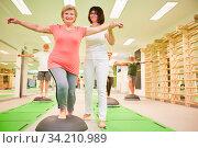 Trainerin gibt Seniorin Hilfestellung beim Balance Training auf dem Bosu Ball im Fitness Kurs. Стоковое фото, фотограф Zoonar.com/Robert Kneschke / age Fotostock / Фотобанк Лори
