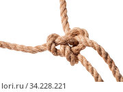 Knot of Running bowline loop close up on thick jute rope isolated on white background. Стоковое фото, фотограф Zoonar.com/Valery Voennyy / easy Fotostock / Фотобанк Лори