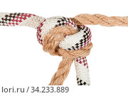 Купить «Offset overhand bend joining two ropes close up isolated on white background», фото № 34233889, снято 5 августа 2020 г. (c) easy Fotostock / Фотобанк Лори