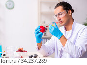Young male nutrition expert testing food products in lab. Стоковое фото, фотограф Elnur / Фотобанк Лори