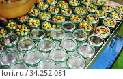 View of open glass cans filled with marinated green olives on pickles producing factory. Стоковое видео, видеограф Яков Филимонов / Фотобанк Лори