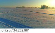 Aerial drone view of cold winter landscape with arctic field, trees covered with frost snow and morning sun rays over horizon. Стоковое видео, видеограф Александр Маркин / Фотобанк Лори