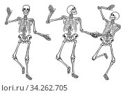 Lustige tanzende Skelette isoliert auf weißem Hintergrund. -Illustration, Set. Стоковое фото, фотограф Zoonar.com/scusi / easy Fotostock / Фотобанк Лори