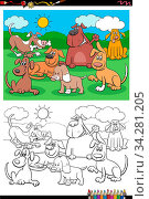 Cartoon Illustration of Funny Dogs and Puppies Animal Characters Group Coloring Book Page. Стоковое фото, фотограф Zoonar.com/Igor Zakowski / easy Fotostock / Фотобанк Лори