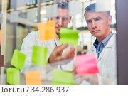 Zwei Ärzte lesen aufmerksam Zettel mit Ideen im kreativen Brainstorming Seminar. Стоковое фото, фотограф Zoonar.com/Robert Kneschke / age Fotostock / Фотобанк Лори