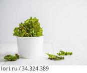 Homemade kale chips ready-to-eat, copy space left. Стоковое фото, фотограф Ольга Сергеева / Фотобанк Лори