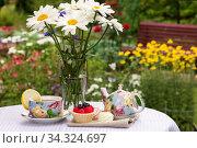 Утреннее чаепитие с ягодным десертом и сладким зефиром в саду на свежем воздухе. Редакционное фото, фотограф Людмила Капусткина / Фотобанк Лори
