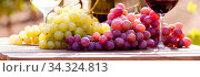 bunch of grapes on table. Стоковое фото, фотограф Татьяна Яцевич / Фотобанк Лори