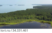 Купить «Aerial video of forest boggy lake in the Karakansky pine forest near the shore of the Ob reservoir.», видеоролик № 34331461, снято 19 июля 2020 г. (c) Serg Zastavkin / Фотобанк Лори