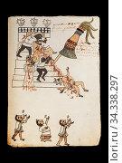 Codex Tudela, 16th-century pictorial Aztec codex. Museum of the Americas... Стоковое фото, фотограф Juan García Aunión / age Fotostock / Фотобанк Лори