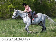 Купить «Little European girl rides a white horse», фото № 34343497, снято 30 мая 2020 г. (c) EugeneSergeev / Фотобанк Лори