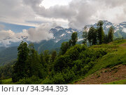 Купить «The Summer landscape in the Caucasus Mountains. Russia», фото № 34344393, снято 1 июня 2018 г. (c) Володина Ольга / Фотобанк Лори
