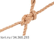 Купить «Another side of hunter's bend knot joining two ropes close up isolated...», фото № 34360293, снято 5 августа 2020 г. (c) easy Fotostock / Фотобанк Лори