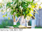 Spring scene in the green garden. Стоковое фото, фотограф Zoonar.com/Galyna Andrushko / easy Fotostock / Фотобанк Лори