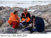Group of orntithologists monitoring Antarctic Skua chick (Stercorarius antarcticus) at Dumont d'Urville Station , Antarctica, January 2013. Стоковое фото, фотограф Fred Olivier / Nature Picture Library / Фотобанк Лори