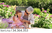 grandmother and baby granddaughter with smartphone. Стоковое видео, видеограф Syda Productions / Фотобанк Лори
