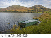 The shore of Loweswater with Darling Fell and Low Fell beyond in ... Стоковое фото, фотограф Craig Joiner / age Fotostock / Фотобанк Лори
