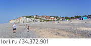 Sunbathers and colourful beach cabins on shingle beach / pebble beach at Criel-sur-Mer in summer, Seine-Maritime, Normandy, France, June 2019. Стоковое фото, фотограф Philippe Clement / Nature Picture Library / Фотобанк Лори