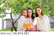 young women toasting non alcoholic drinks. Стоковое фото, фотограф Syda Productions / Фотобанк Лори