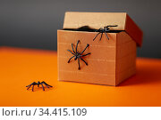 toy spiders crawling out of gift box on halloween. Стоковое фото, фотограф Syda Productions / Фотобанк Лори