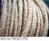 Джутовая веревка смотанная в бухту. Стоковое фото, фотограф Вячеслав Палес / Фотобанк Лори