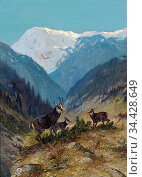 Muller Moritz - Flock of Chamois in the High Mountains - German School... Редакционное фото, фотограф Artepics / age Fotostock / Фотобанк Лори