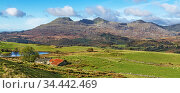 Moelwyn Mountains looking west from near Llan Festiniog with Moelwyn Bach on the left and Moelwyn Mawr in the centre, North Wales, UK, October 2019. Стоковое фото, фотограф Alan Williams / Nature Picture Library / Фотобанк Лори