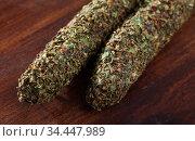Catalan sausage fuet in herbs. Стоковое фото, фотограф Яков Филимонов / Фотобанк Лори