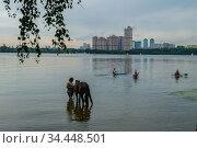 Москва, Строгинская пойма Москвы-реки. Редакционное фото, фотограф glokaya_kuzdra / Фотобанк Лори