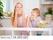 Zwei Kinder einer Familie essen Brötchen zum Frühstück in der Küche. Стоковое фото, фотограф Zoonar.com/Robert Kneschke / age Fotostock / Фотобанк Лори