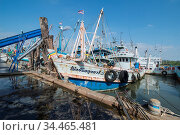 Fishing boat in the harbour at the fishing village of Sai Noi near... Стоковое фото, фотограф Zoonar.com/URS FLUEELER / age Fotostock / Фотобанк Лори