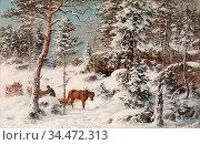 Munsterhjelm Hjalmar - Forest View from Hauho Häme - Finnish School... Редакционное фото, фотограф Artepics / age Fotostock / Фотобанк Лори